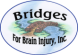 Bridges for Brain Injury